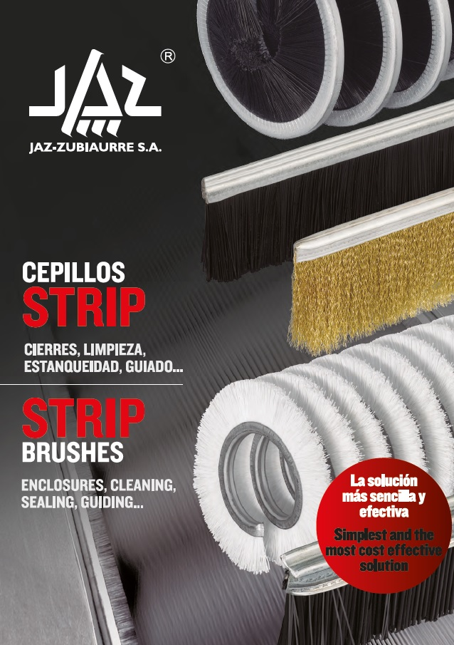 CEPILLOS STRIP